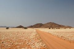Desierto en Namibia Fotografía de archivo libre de regalías