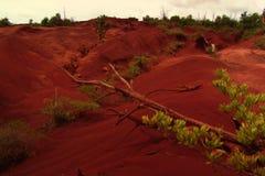 Desierto hawaiano Foto de archivo libre de regalías