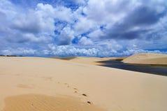 Desierto infrecuente Fotografía de archivo