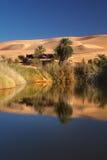 Desierto libio Foto de archivo libre de regalías