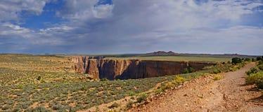 Desierto los E.E.U.U. de Arizona Foto de archivo