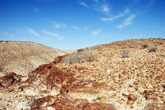 Desierto Negev Fotos de archivo libres de regalías