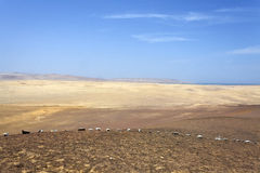 Desierto - parque nacional de Reserva National de Paracas en AIC Perú, Suramérica Fotos de archivo libres de regalías