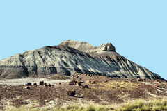 Desierto pintado Imagenes de archivo