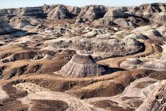 Desierto pintado Fotografía de archivo