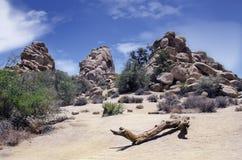 Desierto rocoso Fotos de archivo libres de regalías