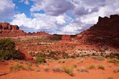 Desierto rojo Fotos de archivo libres de regalías