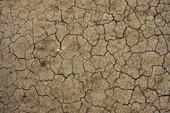 Desierto seco Imágenes de archivo libres de regalías