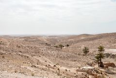 Desierto seco en tiempo nublado Foto de archivo libre de regalías