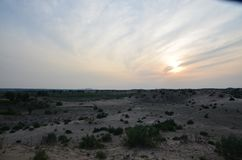 Desierto vibrante foto de archivo libre de regalías