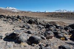 Desierto volcánico de Altiplano en Bolivia Foto de archivo