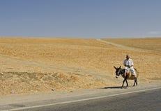 Desierto y camino Fotografía de archivo libre de regalías