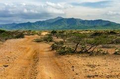 Desierto y colinas verdes foto de archivo libre de regalías