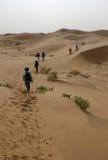 Desiertos Fotos de archivo