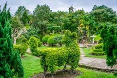 Desighn da paisagem com figura galope do arbusto fotos de stock royalty free