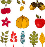 Design with autumn icons and objects. Background design with autumn icons and objects Stock Image