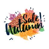 Design autumnal promotion web banner and label with Sale Autumn text on modern color silhouette maple leaf and season Stock Photos