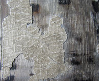 Design av wood texturbakgrund Royaltyfria Foton