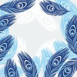 Design background with hand drawn feathers peacock Royalty Free Stock Images