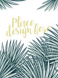 Design background with leaves of palm trees in sketch style Stock Image