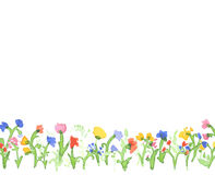 Design banner with watercolor flowers. Stock Image