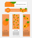 Design of Banners with Fresh Apricot. Stock Images