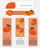 Design of Banners with Yummy Mango. In vector format for the company Royalty Free Stock Photography