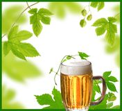 Design of beer and hops Royalty Free Stock Images
