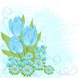 Design card  of vector tulips. (Flower background Royalty Free Stock Image