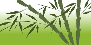 Design of chinese bamboo trees Royalty Free Stock Images