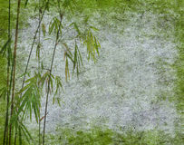 Design of chinese bamboo trees with texture Royalty Free Stock Image