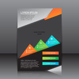 Design of the colour flyer vector illustration whit place for pictures and with infographic Stock Images