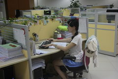 Design company female employees in SHENZHEN Stock Image