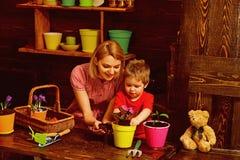 Design concept. Woman and child potting flower, design. Eco design in home interior. Floral design stock photo