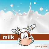 Design with cow and milk splash - vector Royalty Free Stock Image
