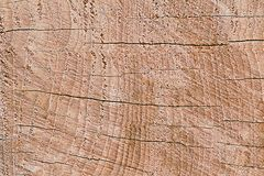 Design of crack wood for pattern and background Stock Image