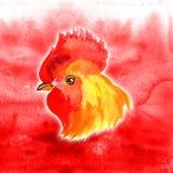 Design de carte chinois de nouvelle année avec le coq rouge, symbole de zodiaque de 2017, sur le fond ardent d'aquarelle Photos stock