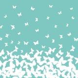 Design de carte d'été de ressort bannière, papillon blanc sur le fond de turquoise de bleu de ciel Vecteur Image stock