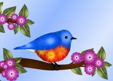 Design de carte de salutation d'oiseau bleu Photos stock