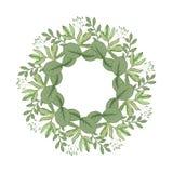 Design de carte floral de vecteur avec les feuilles vertes verdure élégante, forêt d'herbes ronde, cadre mignon de guirlande de c illustration libre de droits