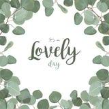 Design de carte floral de vecteur : Fol de verdure de dollar en argent d'eucalyptus illustration stock