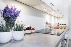 Design de interiores moderno da cozinha Imagem de Stock Royalty Free