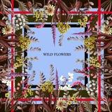 Design des Schals mit wilden Blumen Auch im corel abgehobenen Betrag Lizenzfreies Stockbild