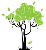 design dina stylized trees Royaltyfri Fotografi