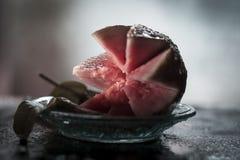 A design done in Psidium guajava Guava Stock Photo