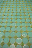 Design of eco flooring Stock Image