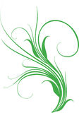 Design element. Curled grass - element for design Royalty Free Stock Photography