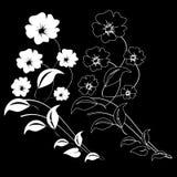 Design element on a black background Stock Images