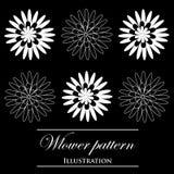 Design element on a black background. Design element flowers on a black background Royalty Free Illustration