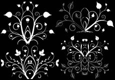 Design element on a black background. White design element flowers on a black background Stock Image